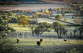 Thumbnail : The Conservation Trust highlights the positive implications of farming on UK biodiversity