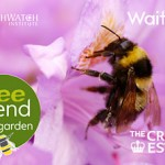 Bee friendly app